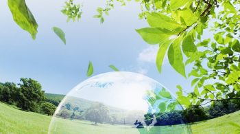 Green-Earth-For-Environment-Solutions